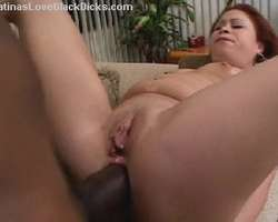 Hot Latina Sex